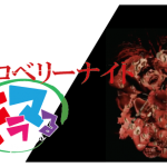 ストロベリーナイト 竹内結子主演 最高の刑事ドラマ動画・あらすじ感想ネタバレ視聴率