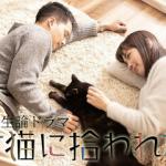 ネコ的人生論ドラマ 捨て猫に拾われた男